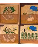 4-lagen puzzel groei aardappel